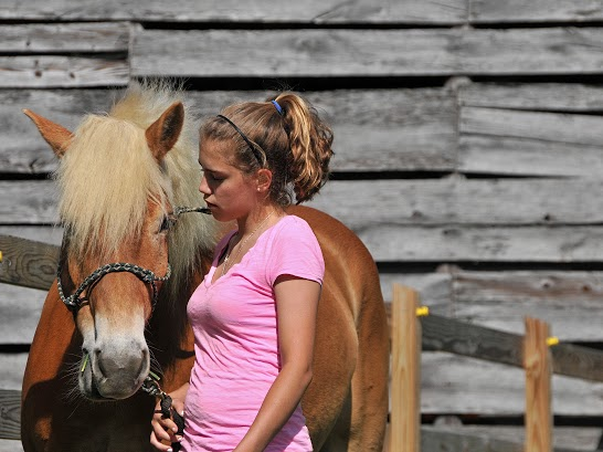 Connecting in equine therapy